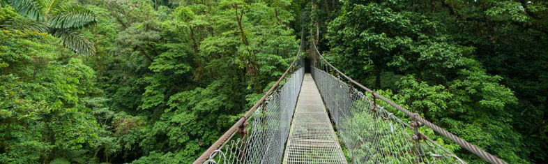 Monteverde Cloud Forest Reservea