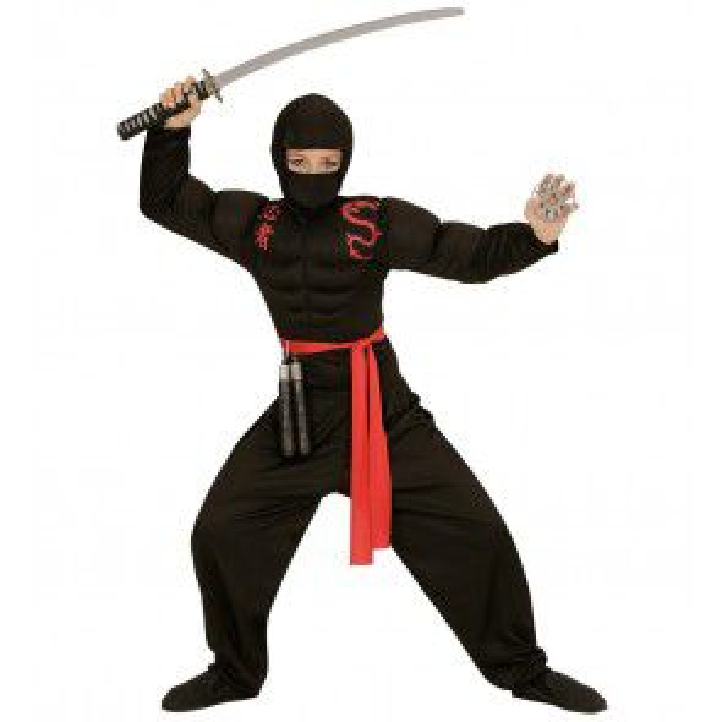 Super ninja kind