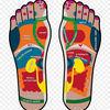Kisspng podalgia reflexology foot human body health 5aee2657c3e458.5831531415255568238024