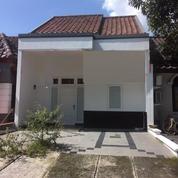 Rumah Modern Harga Terjangkau Jelita Alam Sutera (10171267) di Kota Tangerang Selatan