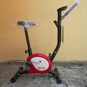 alat fitness sepeda statis belt trainer