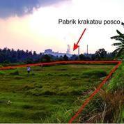 Tanah Investasi Di Ciwandan, Cilegon, Banten (10751697) di Kota Cilegon