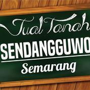 Tanah Sendangguwo Mobil Masuk (11029969) di Kota Semarang