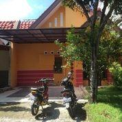Rumah Sutera JEliTA Alam Sutera NEGO (11154337) di Kota Tangerang