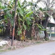 Tanah Kering 712 M2 Daerah Eksekutif Solo Baru, Sukoharjo, Surakarta (11190331) di Kab. Sukoharjo