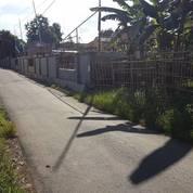Tanah Apik (11192483) di Kota Semarang