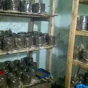 Berternak Semut Rang Rang (11233443) di Kab. Garut