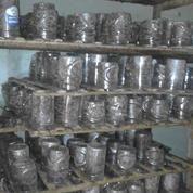 Berternak Semut Rang Rang (11233961) di Kab. Garut