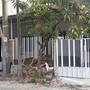 Rumah Gress Minimalis SUTOREJO TENGAH (11235543) di Kota Surabaya