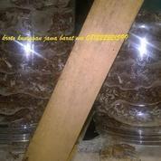 Ternak Kroto Media Stoples (11242887) di Kab. Tasikmalaya