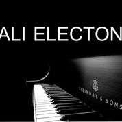 Hiburan Electone Dan Organ Tunggal Di Bali