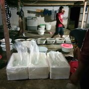 Bibit Ikan Kerapu Cantang 081236232495 (11265483) di Kab. Buleleng