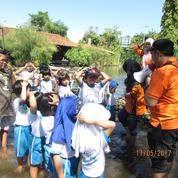 Fun Outbond Kids Untuk TK Dan Playgrup Kota Semarang (11357087) di Kota Semarang