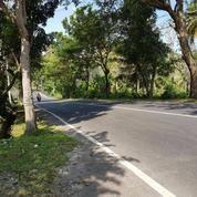 BUC Tanah Kavling Balian Beach 1 Unit Saja (11381759) di Kab. Tabanan