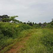 Tanah Menawan Langsung Olah