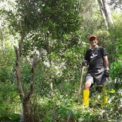 Heru Ada Tanah Desa Makendeng Tanah Toraja Sulwesi-Selatan. (11568909) di Kab. Toraja Utara