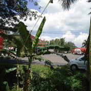 Tanah 3.3 Hektar Di Prajekan Bondowoso Jalan Besar Depan SPBU Dekat Pabrik Gula (11661323) di Kab. Bondowoso