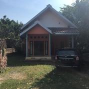 Rumah + Tanah Luas 887 M2 Nganjuk Tanjung Anom (11770423) di Kab. Nganjuk