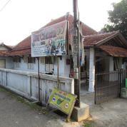Rumah Tanah Luas Di Slawi (11980163) di Kab. Tegal