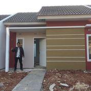 Rumah Murah Subsidi Cicilan Flat Sampai Lunas Terjangkau Dari Jakarta Puri Asri 2 Cileungsi (12117275) di Kab. Bogor