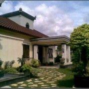 Rumah Gedong Nuansa Bali Samping Jalan Raya Depok Timur