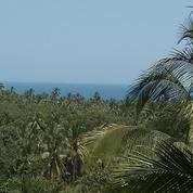 Balian Beach View (12434515) di Kab. Tabanan