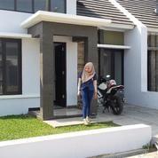 Dikontrakan Rumah Baru Graha Lumintu Residence (12494887) di Kab. Tegal