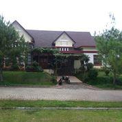 Villa Di Puncak Untuk Kapasitas 10-25 Orang,Villa Benfi