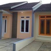 Rumah Murah Siap Huni Model Minimalis (12554559) di Kota Tangerang Selatan