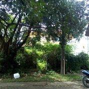 Tanah Asri Nyaman Aman Strategis Beringin Golf Lippo Karawaci (12590101) di Kota Tangerang