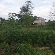 Tanah Yang Masih Murah Di Medan Kota (12717561) di Kota Medan