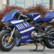 Motor Mini MotoGP Alice 50cc (Mesin Bensin 2tak)