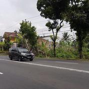 Tanah Kering 5310 M2 Tepi Jalan Raya Boyolali-Semarang, Boyolali (12889465) di Kab. Boyolali