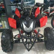 MTX Mini ATV Rocket 110 Cc READY METIC DAN MANUAL (12953183) di Kota Yogyakarta