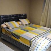 Apartemen 2BR Full Furnish Area MOI Kelapa Gading Square (13110197) di Kota Jakarta Utara