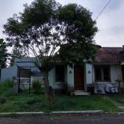 Rumah Murah Asri Dan Sangat Strategis Siap Huni Taman Ubud Loka (13124361) di Kota Tangerang