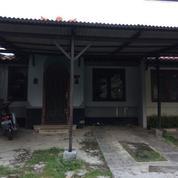 Rumah Murah Asri Dan Sangat Strategis Siap Huni Taman Ubud Loka (13124741) di Kota Tangerang