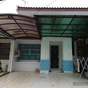 Rumah Mewah Asri Dan Sangat Strategis Siap Huni UBUD KENCANA (13163145) di Kota Tangerang