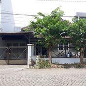 Rumah Bangunan Developer Di Panjang Jiwo Permai