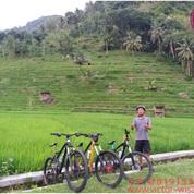 Paket Wisata Sepeda Keliling Imogiri (13349103) di Kab. Bantul