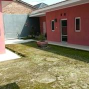 Rumah Kos Kosan Di Slawi Kab Tegal (13499785) di Kab. Tegal
