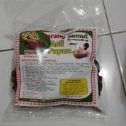 Sarang Semut Asli Papua (13627739) di Kota Bekasi