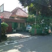 Rumah Luas Dan Besar Di Daerah Prawirotaman Yogyakarta. (13729591) di Kota Yogyakarta