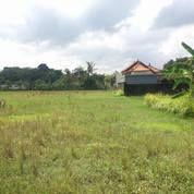 Kavling Alam Sawah Nyitdah (13765655) di Kota Denpasar