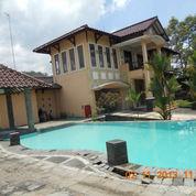 Villa Mewah 901 M2 Di Karangpandan, Tawangmangu, Karanganyar (1380286) di Kab. Karanganyar