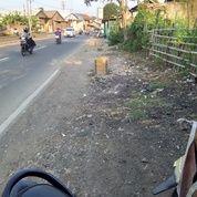 Tanah Darat Pinggir Jalan Luas 3500 M/Mnya 2900 Rb Surat SHM