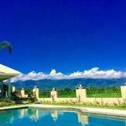 Villa Kolonial Modern Di Kawasan Uma Anyar Singaraja Bali (14026281) di Kota Denpasar