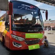 Bus Medium FE84GBC Thn 2015