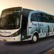 Promo Tiket Bus Murah Rute Jambi - Jogja Dan Sebaliknya. Hubungi NEMOB. (14129333) di Kota Jakarta Utara