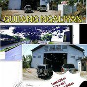 GUDANG DINGALIYAN PINGGIR JALAN RAYA (14200351) di Kota Semarang